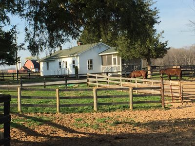 Photo for Elegant Cottage on 600 Acre Horse & Cattle Farm