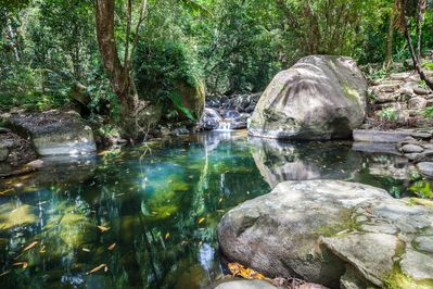 Daintree Secrets waterfalls and swimming hole on the dry season