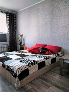 Photo for Cozy apartment near the bus station