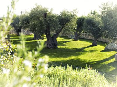 Photo for Enchanting b&b in Trulli -Suite -