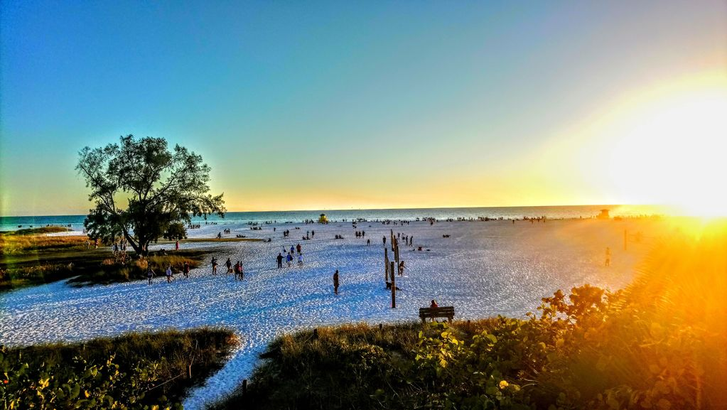 Tropical Dreams Sarasota - Near Siesta Key Updated, 2 King beds, Covered parking