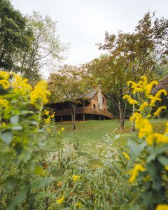 Photo for 4BR Cabin Vacation Rental in Logan, Ohio