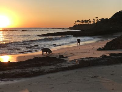 Photo for Steps from sandy beach at famous Heisler Park.