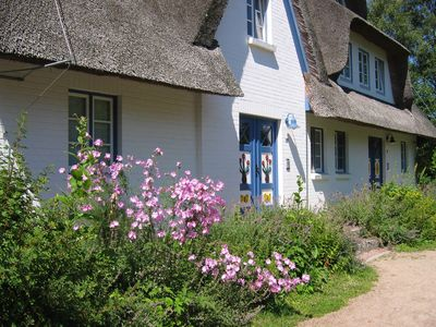 Photo for Holiday apartment on the beach in a traditional thatched-roofed house