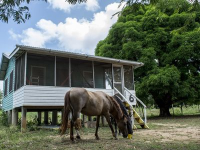 Photo for Wooden House in a tropical horse farm