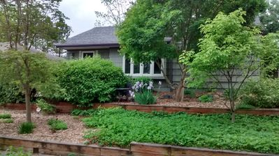 Photo for Beautiful Home!  Brand New Remodeled Lower Level Of Ann Arbor