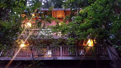 Photo for Beautiful Retreat in the middle of the Redwood Forest.