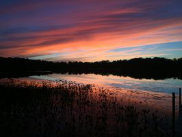 Photo for 6BR House Vacation Rental in Gobles, Michigan