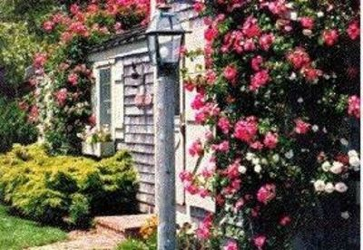 Luxury Rose Covered Cottage