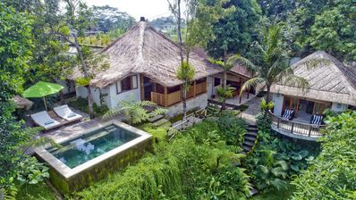 Photo for Mambo, Luxury 3 Bedroom Villa, Feature Gardens, Near Ubud