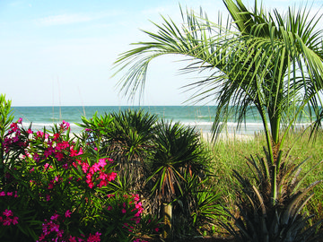 Spring is here! Book your summer vacation now.