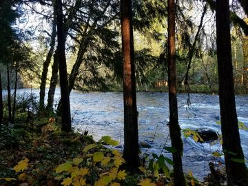 McKenzie River, Oregon, USA
