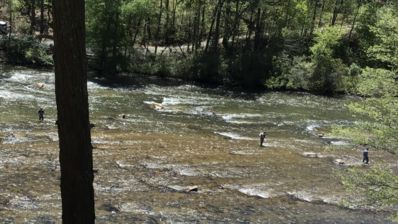 Photo for Blueridge Castaway Cabins on The Toccoa River