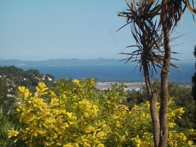Photo for beachfront property: Villa 250m2, exotic gardens, panoramic view Golden Isles;