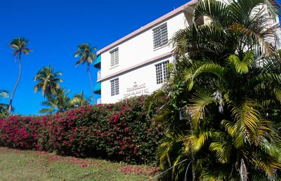 Photo for Beachfront! Located on beautiful Tres Palmas reserve w/ world class snorkeling!