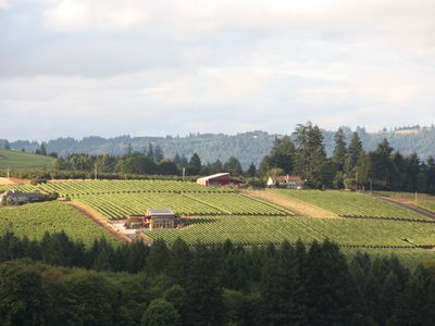 Photo for 3 Master Suites! Exquisite Oregon Wine Country Experience