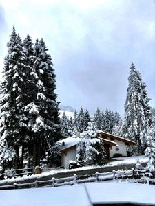 Photo for Idyllic apartment in Königsleiten, centrally located near the lift