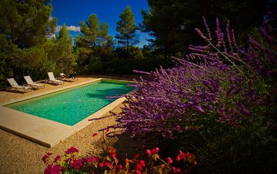 Photo for Stone villa with pool in the heart of the Luberon