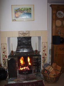 Cosy log fire in sitting room