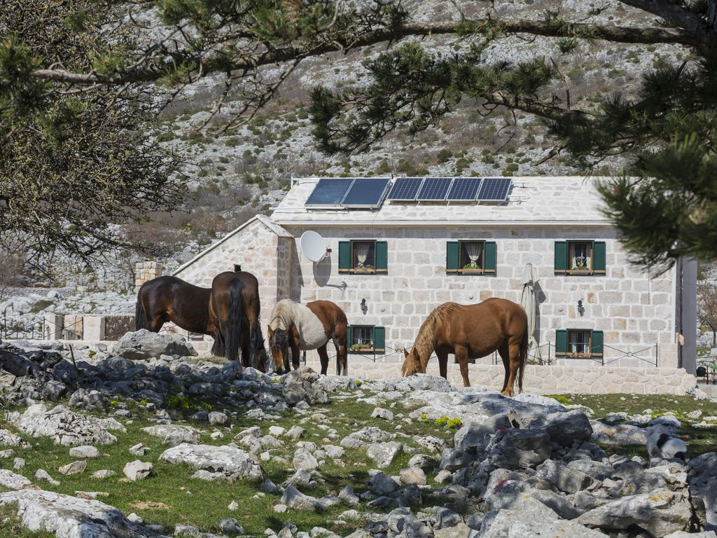 300 year old traditional dalmatien ston house  for people who like peace& nature