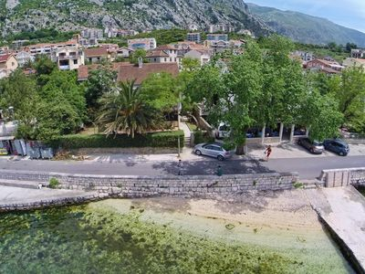 Photo for Apartments 5 meters from sea, Kotor