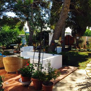 Photo for Beautiful villa in the green of the sea of San Pietro in Bevagna