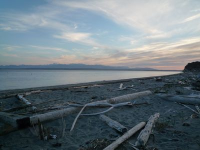 The Olympic Range in all their glory from our community's private beach