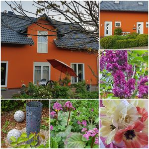 Photo for Cottage at the foot of the Vogelsberg and the Vulkanradweges, pets allowed