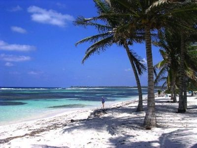 Photo for Secluded Beachfront Grand Cayman  Vacation Rental Condo The Laurelei