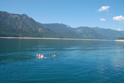 Relaxing in the Lake Cle Elum on a hot summer day.