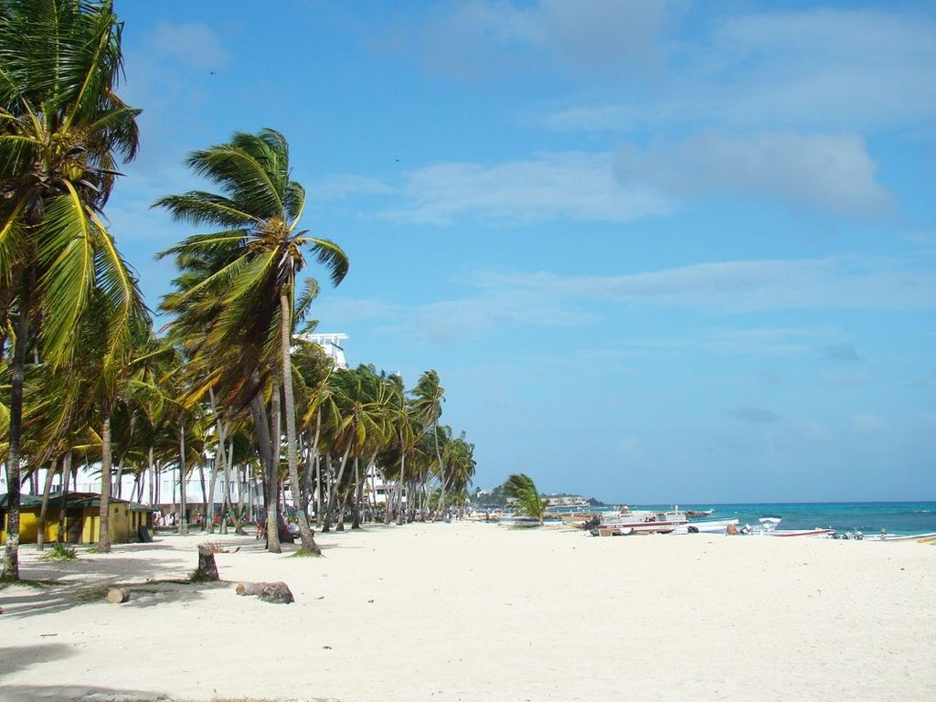 APTO A METROS DE LA PLAYA-DASH VACATIONS