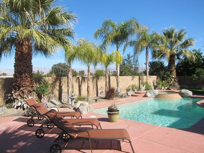 Palm trees in the back yard and pool area!