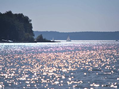 Photo for Fantastic location - holiday home for families with dogs, WLAN - holiday home with dog on Lake Plauer