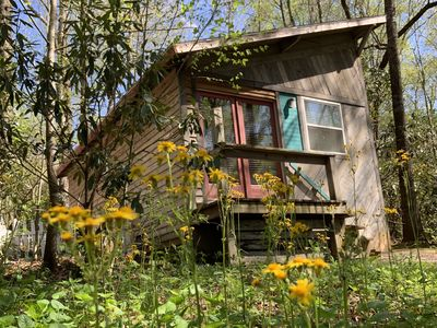 Photo for Turquoise Cabin, Mountaintop Paradise