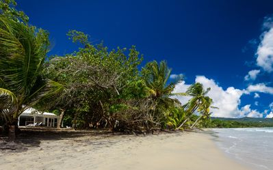 Photo for Le Diamant: House in the beach