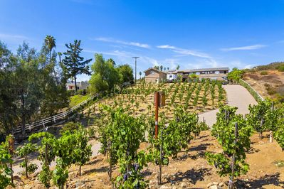 Privately gated estate and vineyard