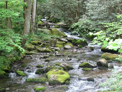 Photo for Peaceful Creekside Cabin near Gatlinburg/Pigeon Forge - PRICE MATCH RATES