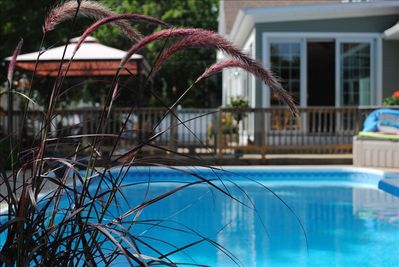 Enjoy our in-ground, heated pool and surrounding gardens and old front porch.