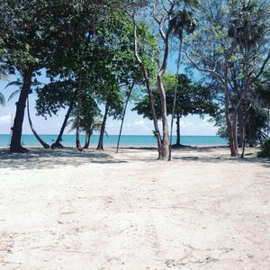 Photo for Tranquil Beachfront Bungalow In Private, Gated, Eco-Dive Resort Community.