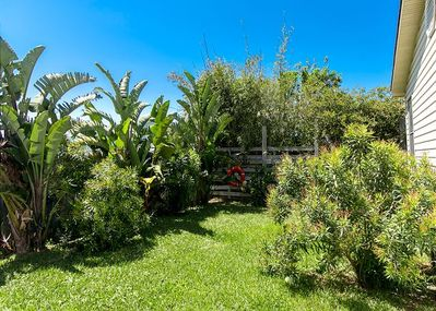 Lush tropical landscaping. Back Yard Is Completely Fenced!