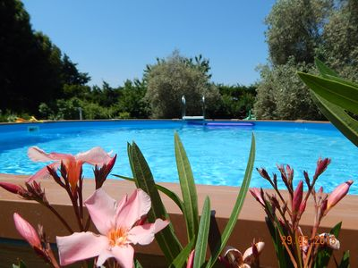 Photo for accommodation in the heart of Provence