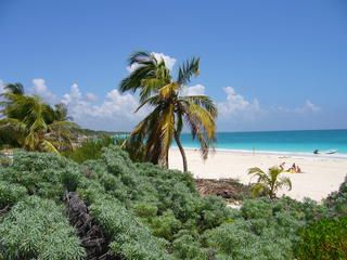 Photo for Les Alisez is a quiet residence at a few steps from beautiful carribean beach