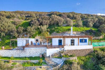 The house is perched on a hillside amidst olive trees