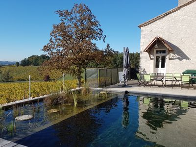 Photo for Residence, vineyards, natural pool, near Bergerac Dordogne Périgord