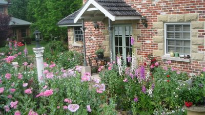 Photo for Annies cottage and garden