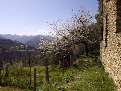 Photo for 2BR House Vacation Rental in Borghetto d'Arroscia (IM)