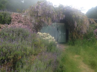 Photo for Big Sur House above the sea with interior edible garden, six months minimum