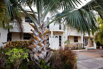 A beautiful bismarck palm sits majestically at the front of the property.