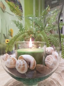 "Photo for Holiday home ""L'infinito verde"