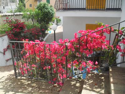 Photo for 1BR Apartment Vacation Rental in Ischia